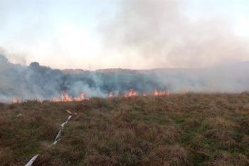 Škoda je nulová, požár dřevin přesto zaměstnal pět jednotek hasičů