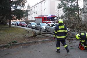 Silný vítr v Praze lámal větve, vyvracel stromy, uvolňoval billboardy