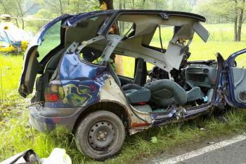 Řidič s vozem narazil do stromu, na místě zemřel
