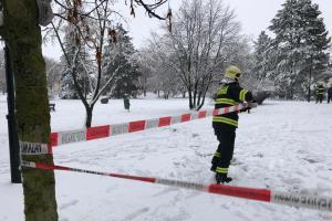Praha pod sněhem a někde i pod spadanými stromy. Hasiči dřeli až do rána