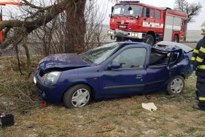 Další řidič nepřežil. U Pcher na Kladensku havarovalo osobní auto
