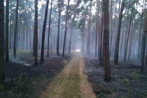 Na Hodonínsku hořel les, více než dvě desítky hodin práce pro hasiče