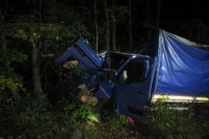 Havarovaná dodávka mezi stromy, hasiči suplovali dřevorubce