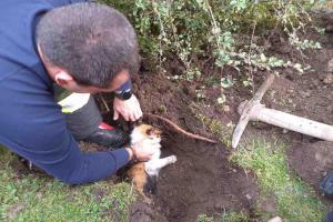 Míček vlákal kočku do trativodní trubky.  Pak jí šlo o holý život