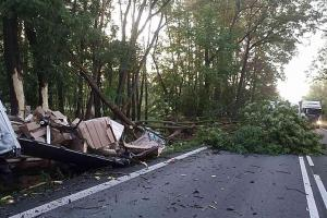 Kamion na Pardubicku při nehodě kácel stromy a odnesla to i dodávka
