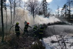 Pět jednotek hasičů na skládce. U Slatiňan vydatně hořel bioodpad