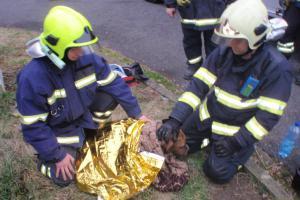 Zatracené bláto! Fenka se nemohla z vody vyškrábat na břeh, pomohli hasiči