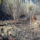 V horku požárů lesů neubývá. Plameny řádily v blízkosti chatové osady