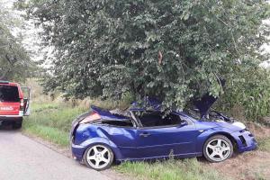 Dva zranění po havárii osobního vozidla u Herálce. Odnesl to i strom