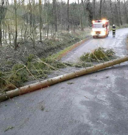 Silný fičák se proháněl na Olomoucku, ničil nejen stromy. Motorové pily se nezastavily