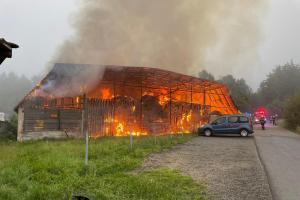 Požár seníku zabil tele, v kravíně byla stovka dobytka (VIDEO)