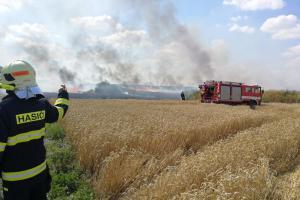 Na Karlovarsku je vyhlášen stav zvýšeného rizika vzniku požárů