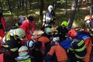 Dívka spadla z koně, hasiči ji transportovali pomocí vrtulníku