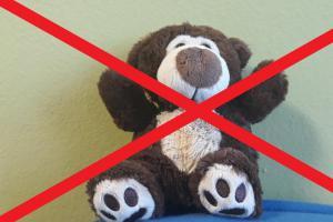 Vzkaz dobrodincům: HZS Plzeňského kraje nesbírá plyšové hračky