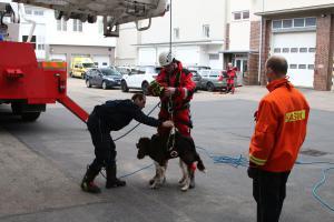 Pes, hasič a kynolog. V Prostějově společně tvrdě cvičili záchranu osob