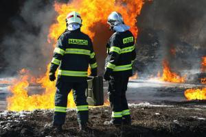 Extra: Nedělní chvilka pro zasmání. Koho zachránit z plamenů dříve? (VIDEO)
