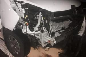 Srážku s autem divočák zaplatil životem, řidič zaplatí opravu karoserie