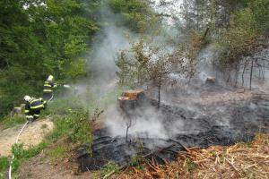 Vítr zlomyslně foukal do požáru, hasiči oheň v lese zkušeně zmákli