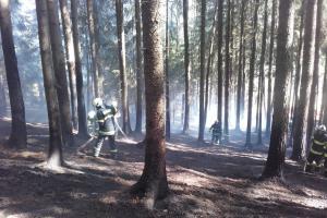 Zelený čtvrtek značně potrápil středočeské hasiče. Hořelo, kde se dalo
