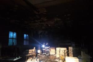 Noční požár paletárny v jihočeském Rodvínově zničil nejen výrobní stroj