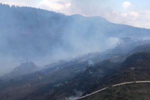 U Žlutic hořely tři hektary lesního porostu, zpomalily i jízdu vlaků