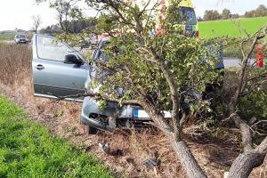 Zastavil ho strom v Třebíči. Řidič pokračoval v sanitce do nemocnice