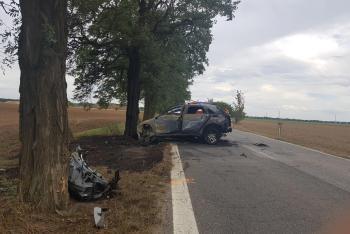 Řidič s osobákem havaroval, utrpěl zranění. Jeho pes nikoliv