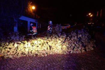 Ve Zlínském kraji odstraňovali hasiči následky poryvů nedělního větru