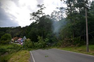 Spadlý strom zapálil trávu a zablokoval silnici u Otvovic na Kladensku (VIDEO)