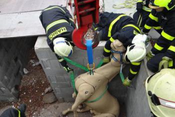Ostravští hasiči trénovali v Brně manipulaci se závěsnou sítí nejen na koně