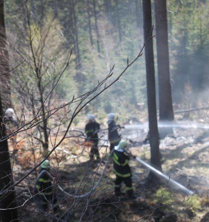 U lesního požáru u Olešnice v Orlických horách zasahovali i polští hasiči