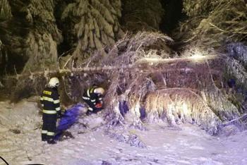 O víkendu se hasiči nezastavili. Převládaly zásahy na popadané stromy