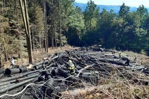 Plameny zničily lesní vyvážecí soupravu. Škoda za víc jak milion